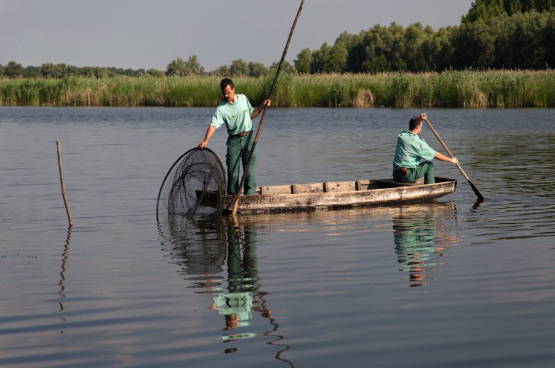 Traditional, fishing, Dunabe, oxbow, Hungary