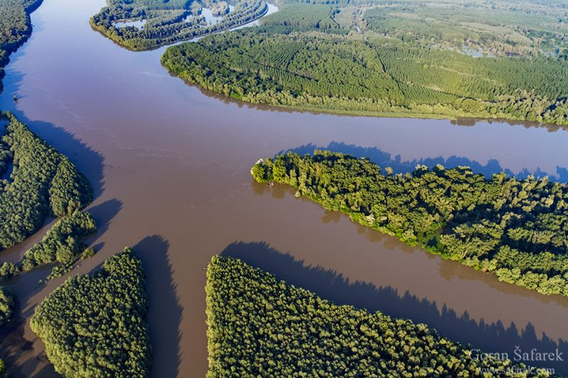 rivers, flood, flooding, damage, nature, management, protection, Kopački rit, croatia, danube