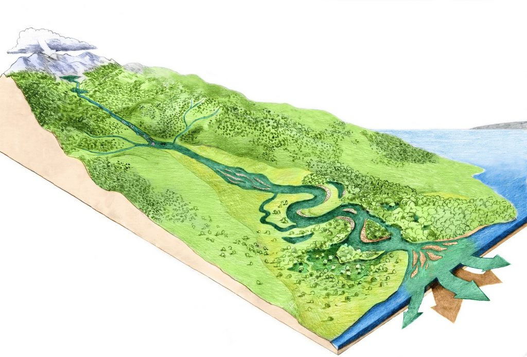 river, longitudinal profile, scheme,image