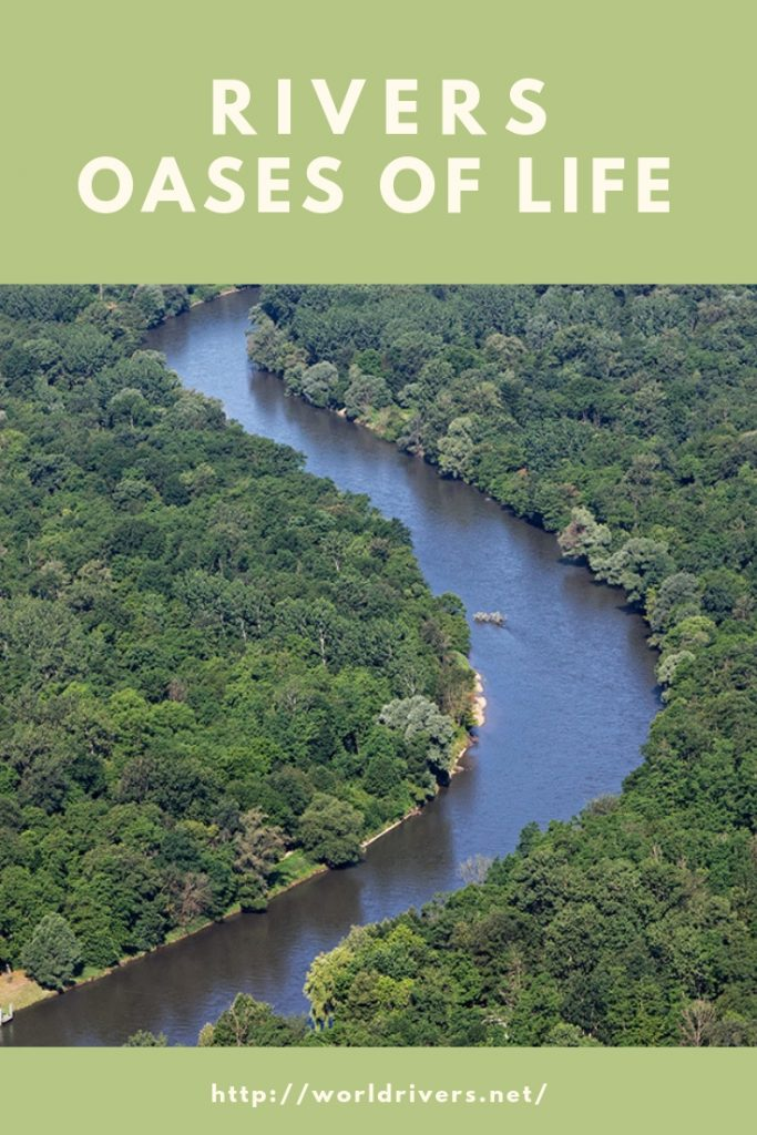 RIVERS – oases of life
