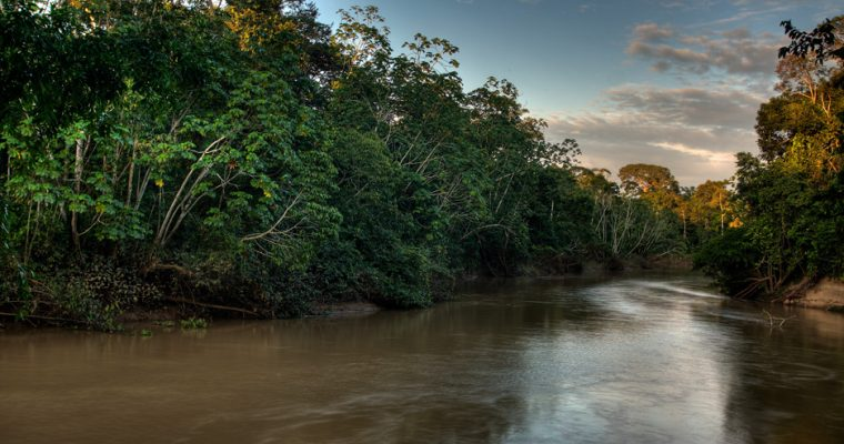 The Tiputini River in Yasuní National Park