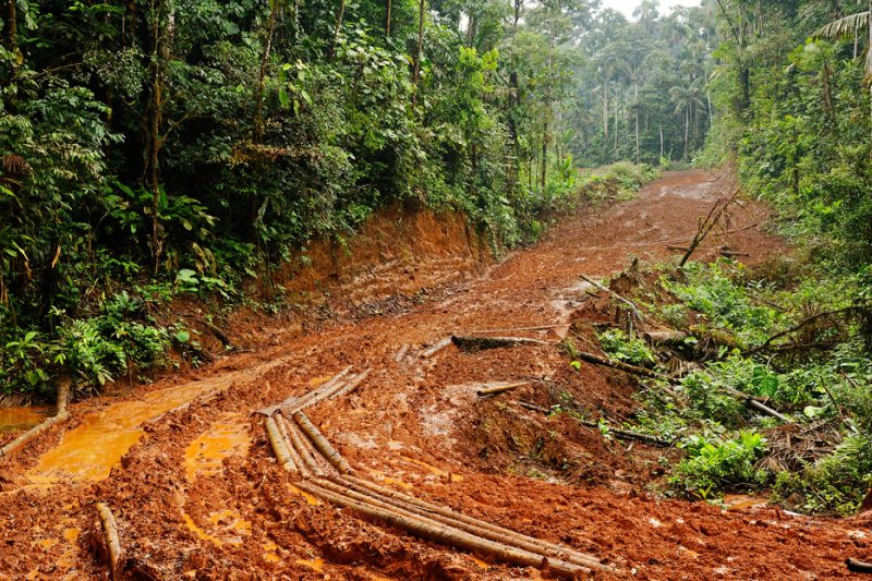 road, deforestation, Zanja Arajuno, Andes, foothills, ecuador, rainforest, tropical, puyo,