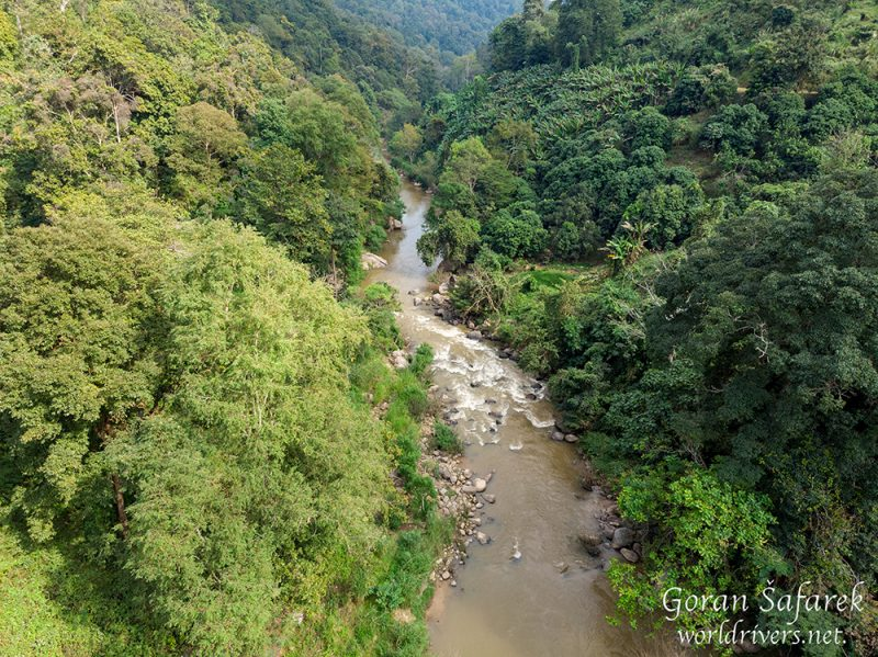 chiang mai, thailand, rafting, river, jungle, adventure