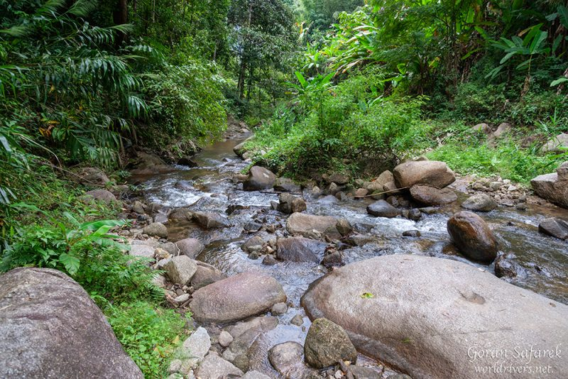 chiang mai, thailand, rafting, river, jungle, adventure
