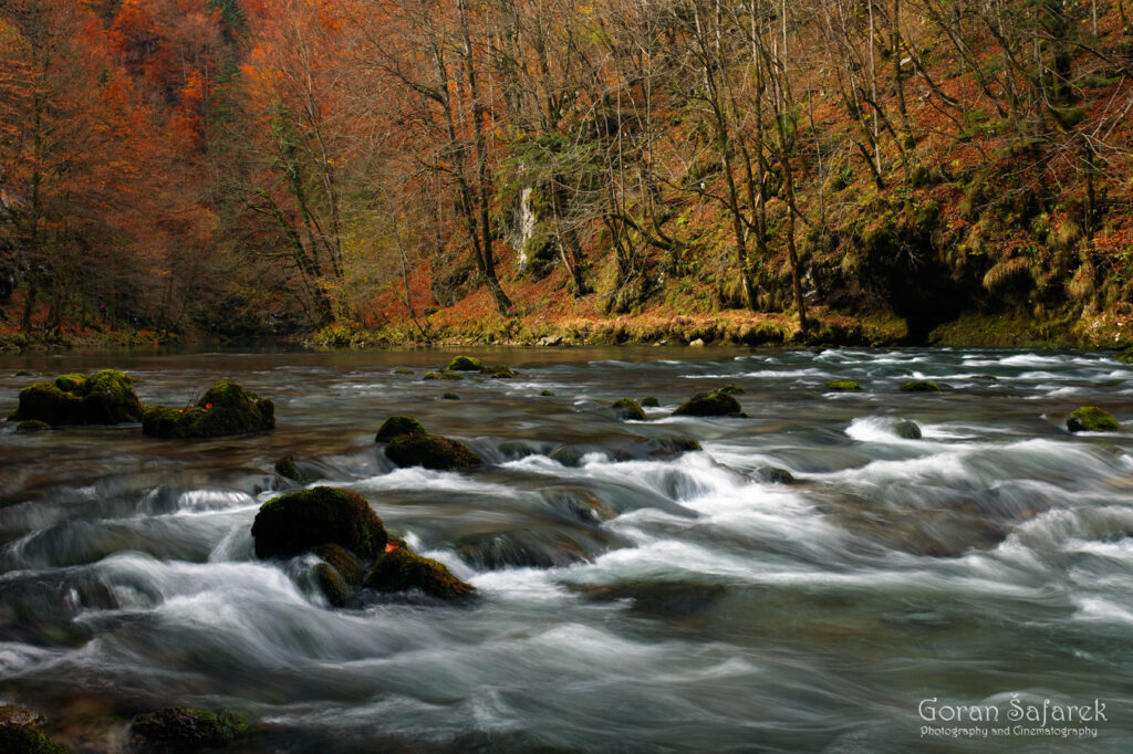 Kupa, kolpa, croatia, slovenia, rapids, autumn, fall