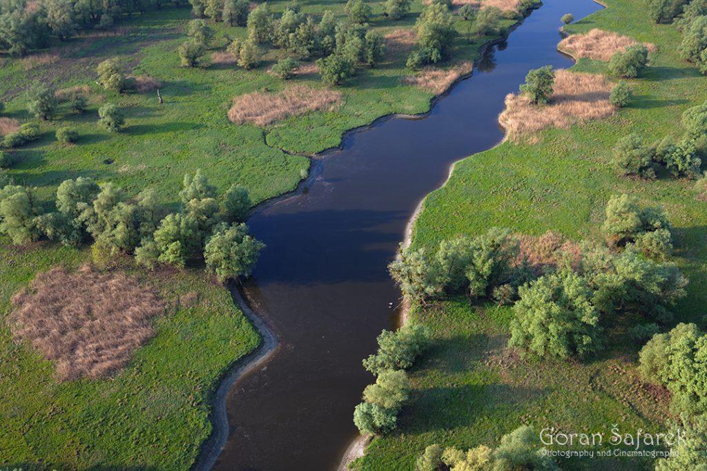 danube, floodplain,backwater, sidearm, sidebranch