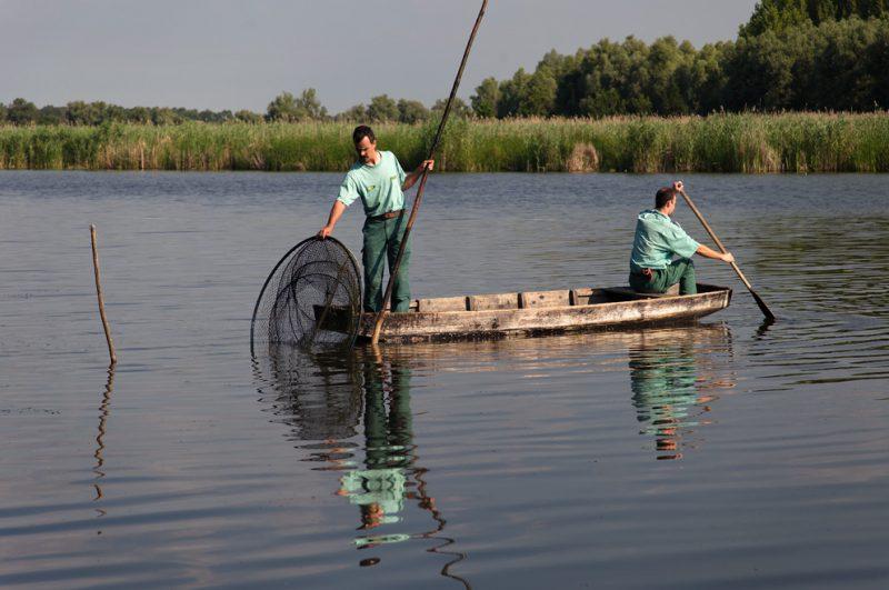 Traditional, fishing, Danube, oxbow, Hungary