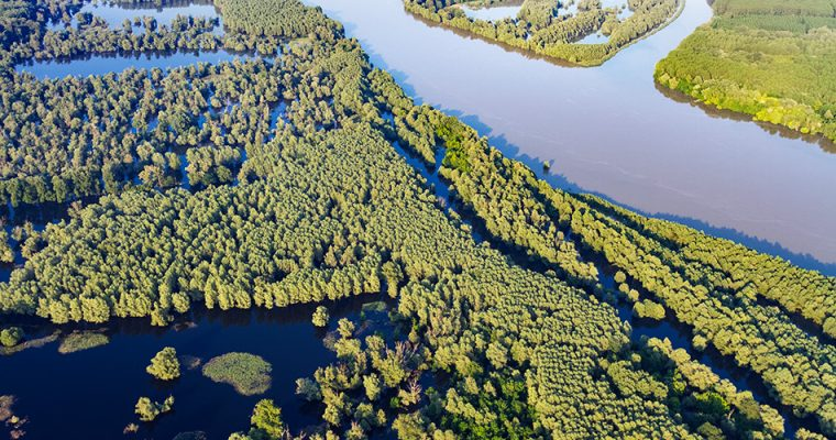 Middle Danube – heart of the European wilderness