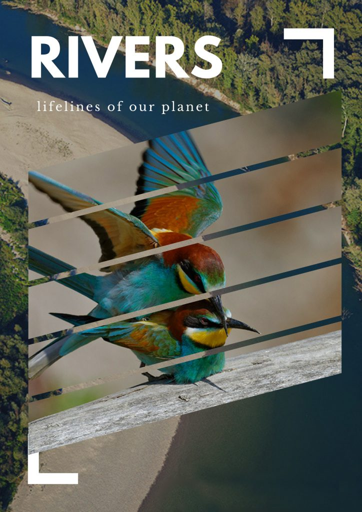 Rivers – lifelines of our planet