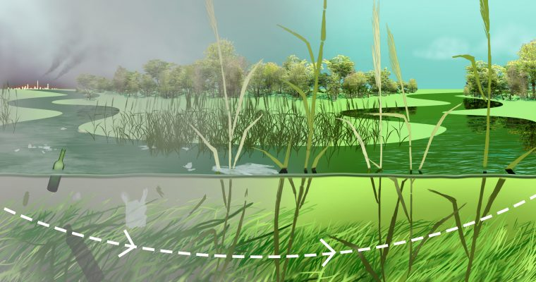 Why are wetlands important to maintain good water quality in rivers?