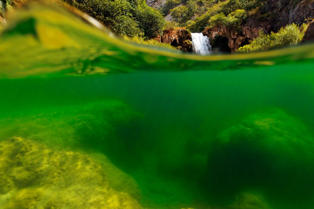 river, croatia, krupa, zrmanja, canyon, underwater, tufa