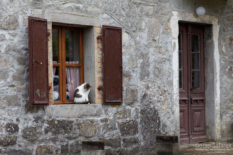 croatia, kotli, river,house, village, cat, window