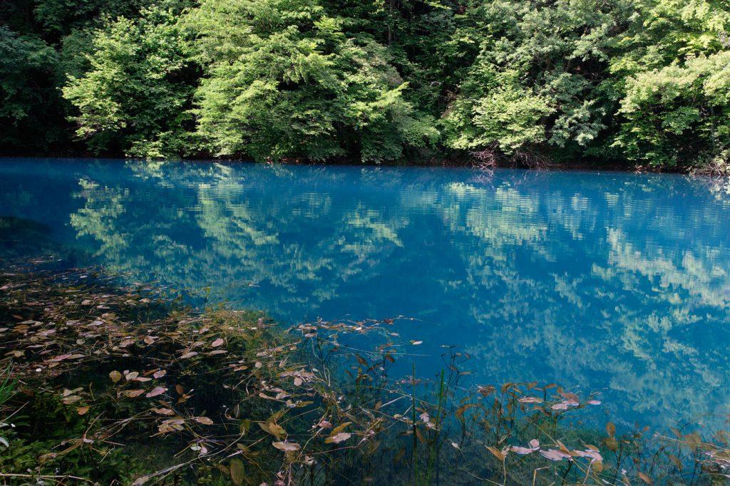 river, source, slunjčica, karst, croatia