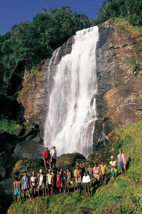 madagascar, šafarek, ranomafana, rivers, national parks, ranomena, jungle, rainforest, waterfall