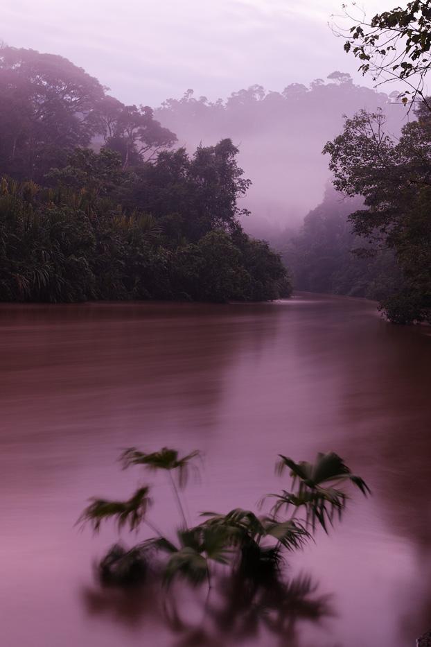 ecuador, macas, shuar, indian, village, amazon, jungle, oriente, river, dawn