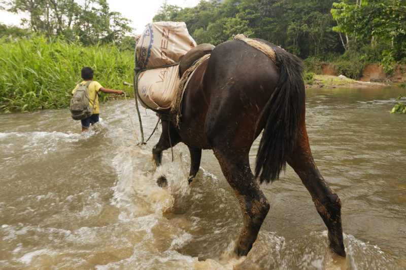 Shuar Indians from Amazon – the keepers of the tradition living on the river