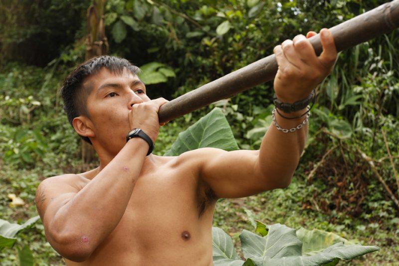 ecuador, macas, shuar, indian, village, amazon, jungle, oriente, blowgun