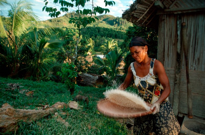 madagascar, stream, farmers, africa, rice