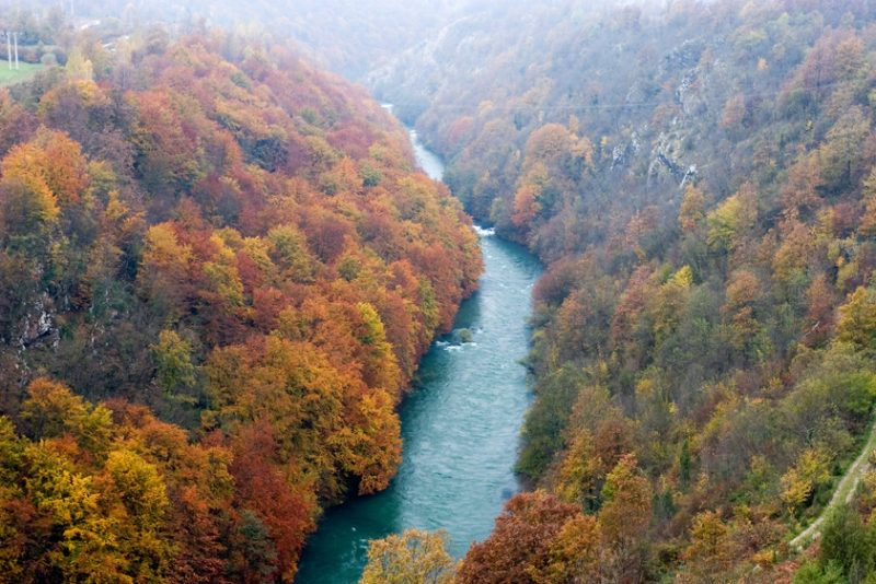 river canyon, forest,autumn,fall,valley