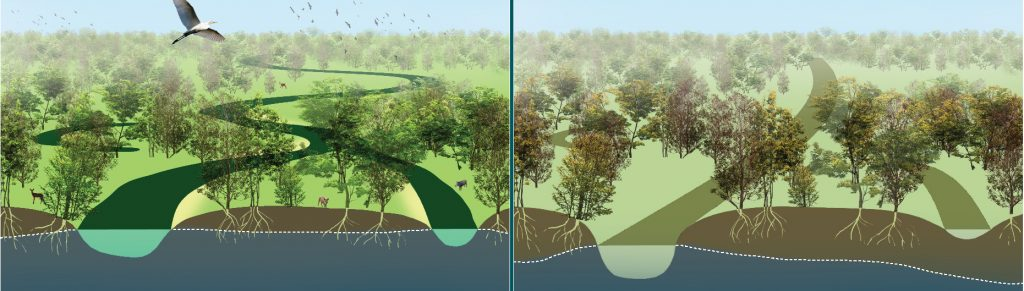 river, regulation, embankment , flood,flooding, river incision, riverbed degradation, drying