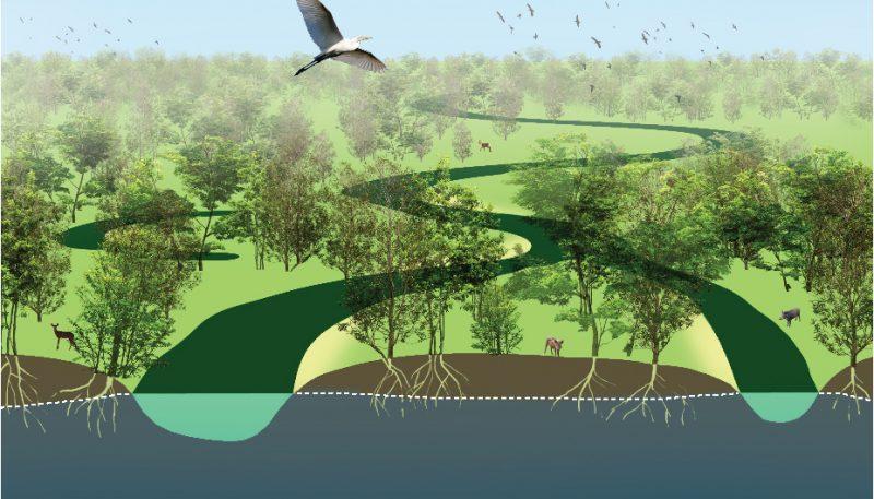ecosystem services, rivers, aqifer, underground water