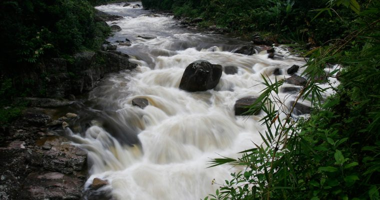 Ranomafana National Park and the Ranomena River