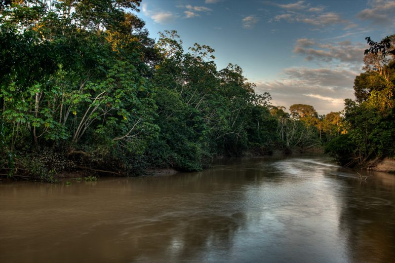 The Tiputini River in Yasuní National Park