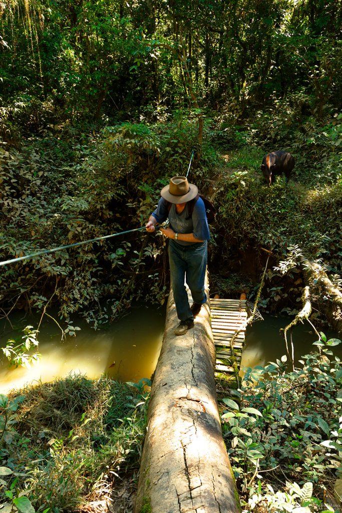 The Tiputini River, Yasuní National Park, ecuador jungle, rainforest, oriente, tropical, stream