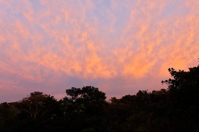 The Tiputini River, Yasuní National Park, ecuador jungle, rainforest, oriente, tropical, sunset