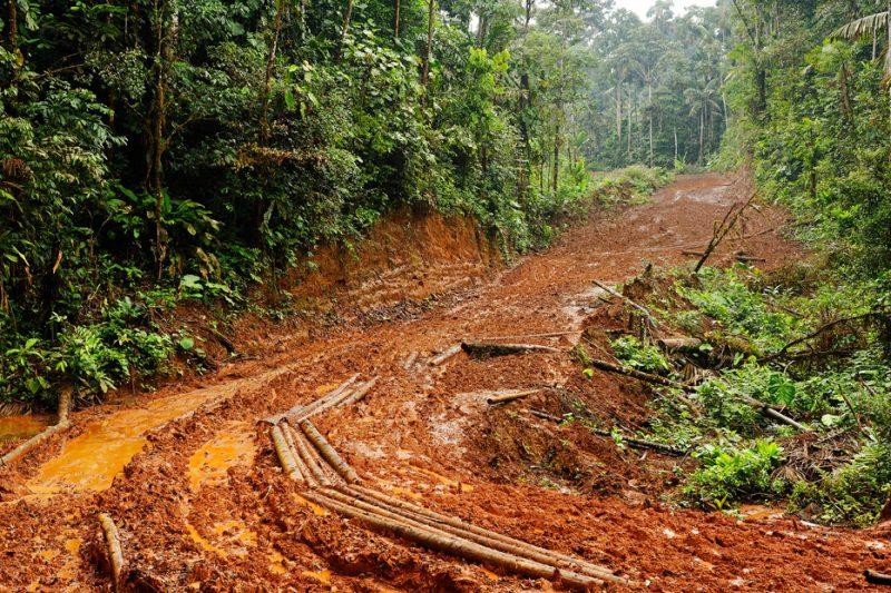 road, deforestation, Zanja Arajuno, Andes, foothills, ecuador, rainforest, tropical, puyo,