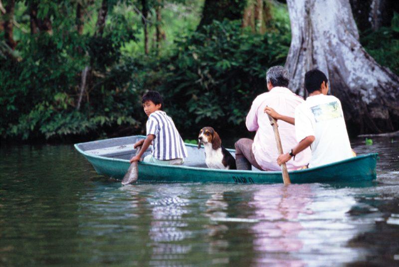 Tortuguero , costa rica,