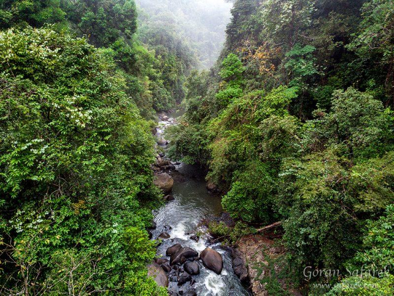Khao Sok National Park and the Sok River