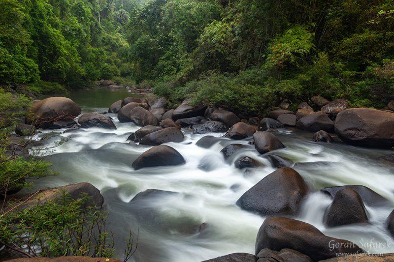 Khao sok, national park, asia, thailand, jungle, rainforest, tropical, river, rapids