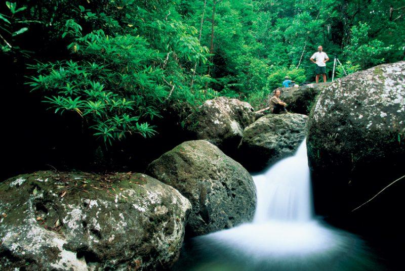 Masoala – where jungle stream meets the sea