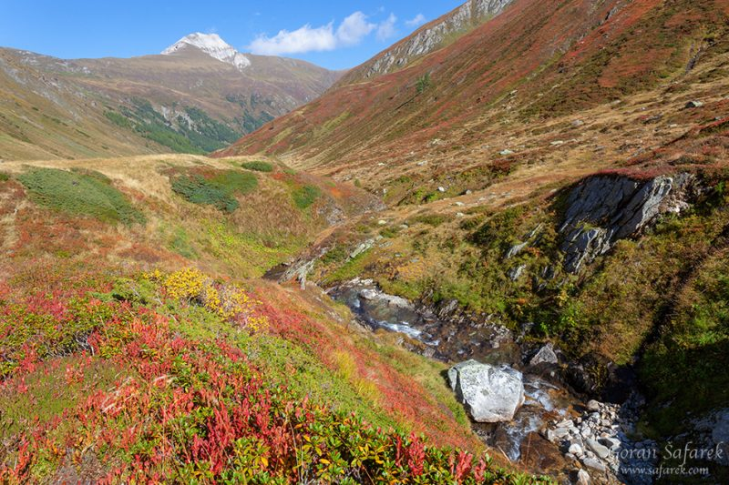 The Mur River source – the charm of the Alps